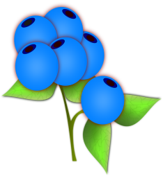 blueberries-306718_640.png