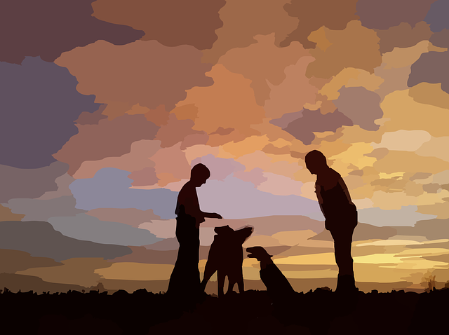 dogs-295137_640.png
